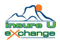 Insure U Exchange