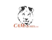 CAMinsures